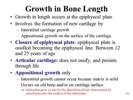6-1 Growth in Bone Length Growth in length occurs at the epiphyseal plate Involves the formation of new cartilage by –Interstitial cartilage growth –Appositional.
