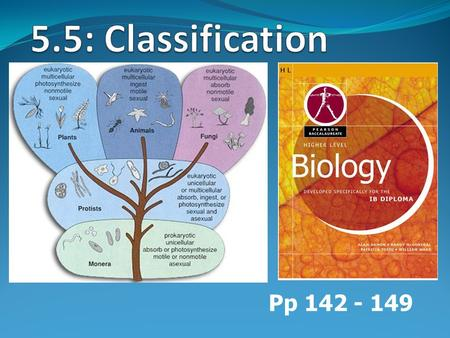 Pp 142 - 149. Binomial system of nomenclature System of assigning scientific/binomial names to organisms designed by Carolus Linneaus in 18 th century.