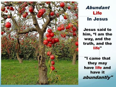 "Abundant Life In Jesus Jesus said to him, ""I am the way, and the truth, and the life I came that they may have life and have it abundantly"