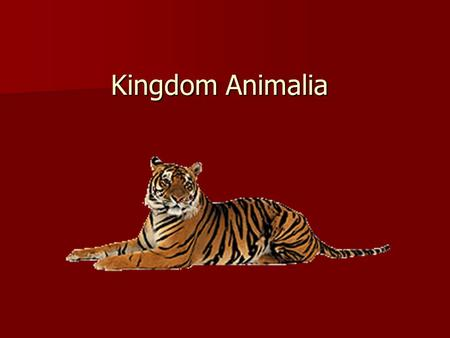 Kingdom Animalia. What characteristics define an animal? What characteristics define an animal?