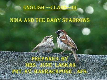 english ---class---iii Nina and the baby sparrows