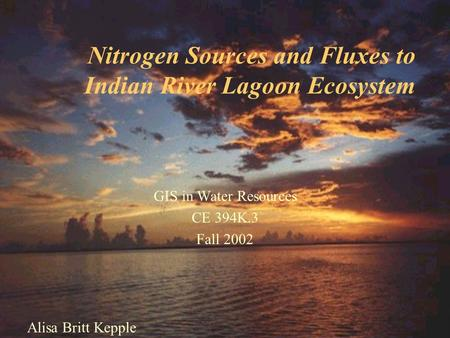 Nitrogen Sources and Fluxes to Indian River Lagoon Ecosystem Alisa Britt Kepple GIS in Water Resources CE 394K.3 Fall 2002.