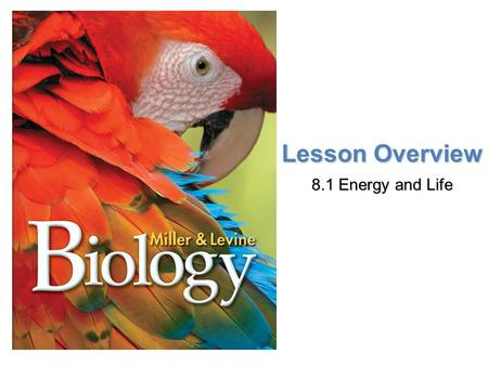 Lesson Overview 8.1 Energy and Life.