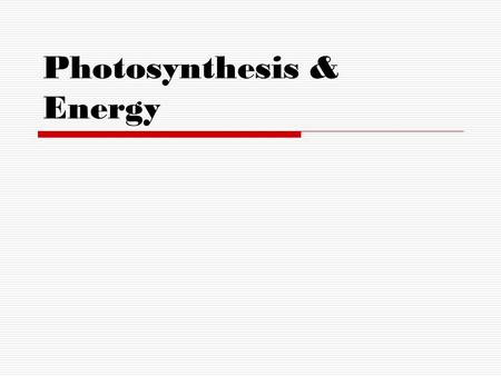 Photosynthesis & Energy. PLANTS also known as Producers – Autotrophs make their own food through PHOTOSYNTHESIS.