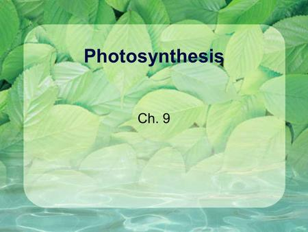 Photosynthesis Ch. 9. Kansas Science Standards The sun is the primary source of energy for life through the process of photosynthesis. -plants and other.