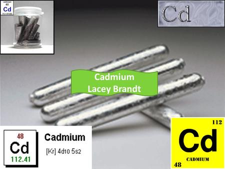 Cadmium Lacey Brandt. Cadmium properties No reaction with water Malleable Ductile Transition metal Solid Silvery grey Oxidation state- +2, +1 Atomic weight-