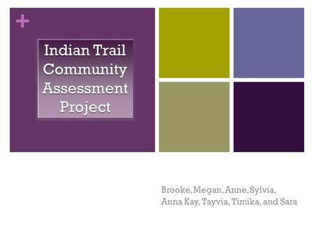 + Brooke, Megan, Anne, Sylvia, Anna Kay, Tayvia, Timika, and Sara Indian Trail Community Assessment Project.