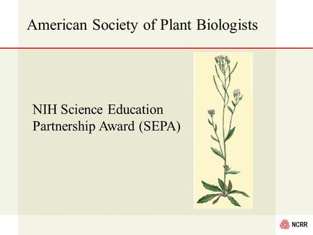 NCRR American Society of Plant Biologists NIH Science Education Partnership Award (SEPA)