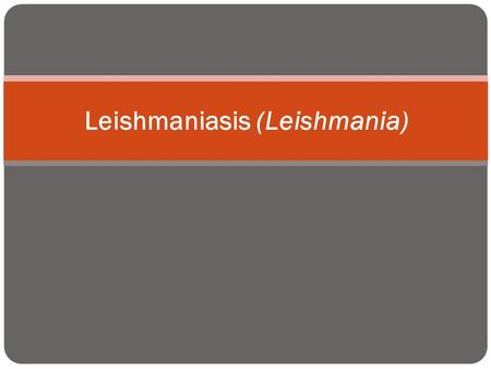 Leishmaniasis (Leishmania). caused by intracellular protozoan parasites of the genus Leishmania transmitted by phlebotomine sandflies disease involving.