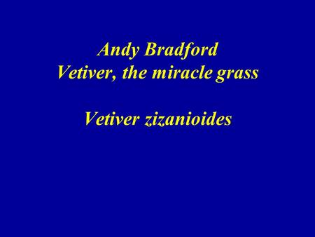 Andy Bradford Vetiver, the miracle grass Vetiver zizanioides.
