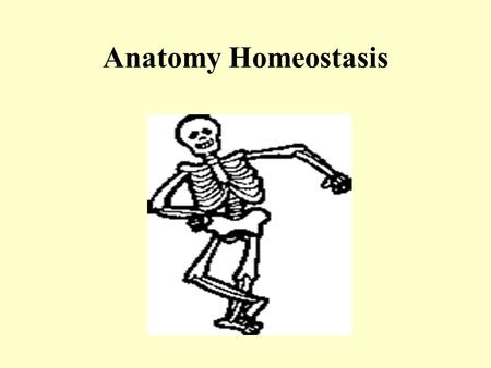 Anatomy Homeostasis. I. Homeostasis and Disease A.Homeostasis – is the maintenance of a relatively constant internal environment. The ability to maintain.