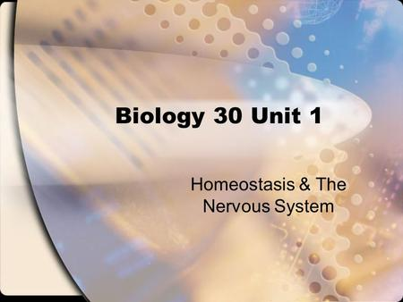 Homeostasis & The Nervous System