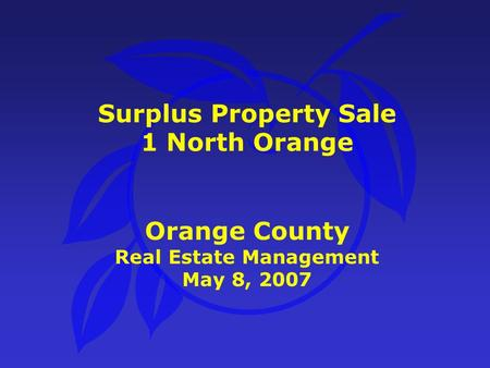 Surplus Property Sale 1 North Orange Orange County Real Estate Management May 8, 2007.
