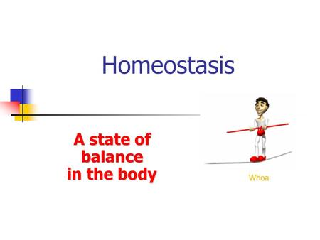 Homeostasis A state of balance in the body Whoa. Maintenance of a stable internal environment = a dynamic state of equilibrium Homeostasis must be maintained.