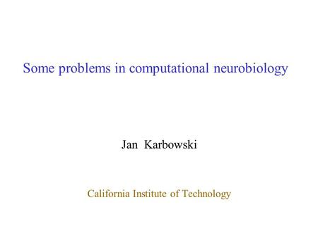 Some problems in computational neurobiology Jan Karbowski California Institute of Technology.