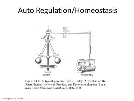 Auto Regulation/Homeostasis Copyright © 2010: Sauro.