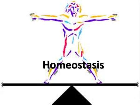 Homeostasis. Objectives 1)Discuss the importance of homeostasis 2)Explore how negative feedback systems work 3)Work through specific feedback systems.