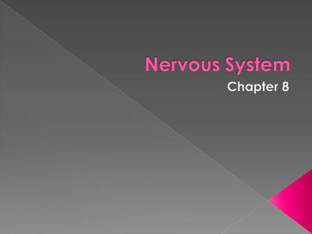  The nervous system is the body's control and communication center.  It serves to organize incoming data into useful information that can be used for.