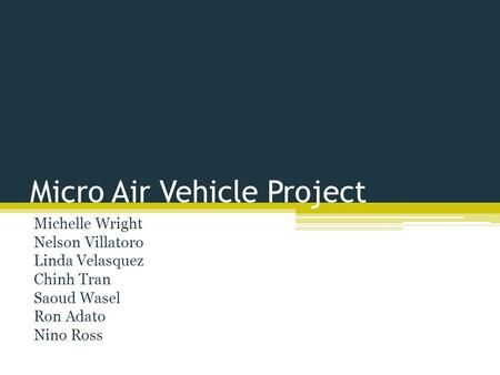 Micro Air Vehicle Project