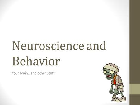 Neuroscience and Behavior Your brain…and other stuff!