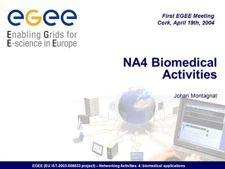 EGEE (EU IST-2003-508833 project) – Networking Activities 4: biomedical applications NA4 Biomedical Activities Johan Montagnat First EGEE Meeting Cork,