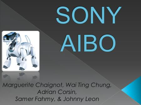  American market less responsive in purchasing AIBO when compared to Japanese market  Problems: › The product remains unprofitable for Sony.