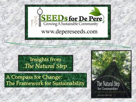 A Compass for Change: The Framework for Sustainability Insights from The Natural Step.