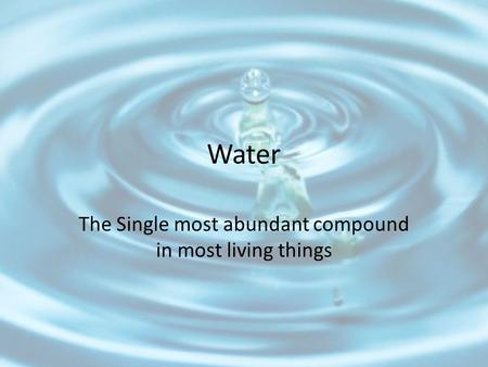 Water The Single most abundant compound in most living things.