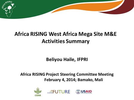 Africa RISING West Africa Mega Site M&E Activities Summary Africa RISING Project Steering Committee Meeting February 4, 2014; Bamako, Mali Beliyou Haile,