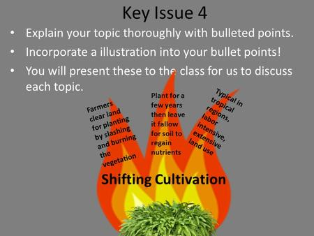 Key Issue 4 Shifting Cultivation