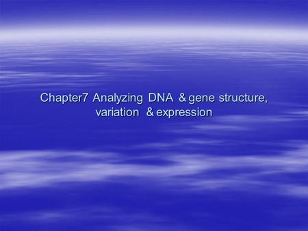 Chapter7 Analyzing DNA & gene structure, variation & expression.