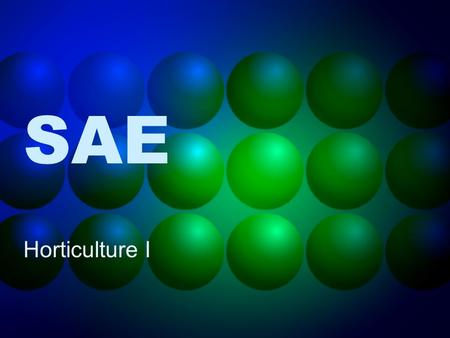 SAE Horticulture I. What is SAE? SAEs are a great way to get classroom credit and FFA awards for doing things like exploring careers, earning money and.