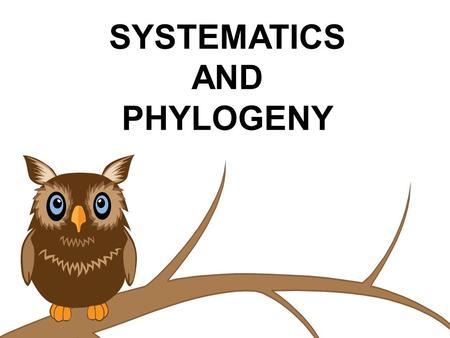SYSTEMATICS AND PHYLOGENY. Upon first glance, one would probably classify this as a…________, but…