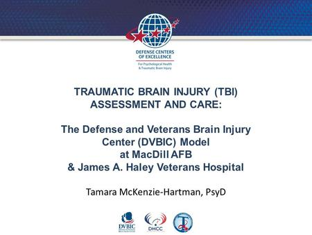 TRAUMATIC BRAIN INJURY (TBI) ASSESSMENT AND CARE: The Defense and Veterans Brain Injury Center (DVBIC) Model at MacDill AFB & James A. Haley Veterans Hospital.