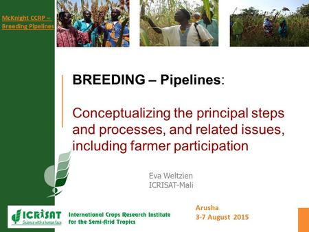 Arusha 3-7 August 2015 McKnight CCRP – Breeding Pipelines BREEDING – Pipelines: Conceptualizing the principal steps and processes, and related issues,