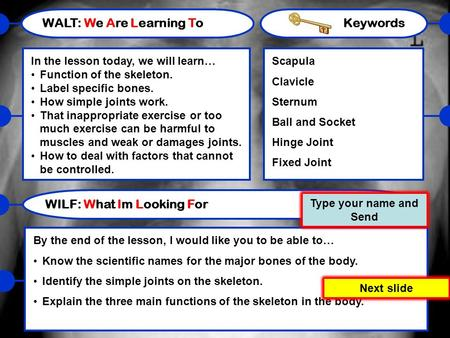 WALT: We Are Learning To In the lesson today, we will learn… Function of the skeleton. Label specific bones. How simple joints work. That inappropriate.