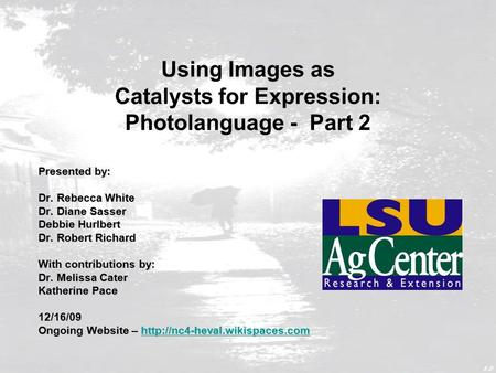 Using Images as Catalysts for Expression: Photolanguage - Part 2 Presented by: Dr. Rebecca White Dr. Diane Sasser Debbie Hurlbert Dr. Robert Richard With.