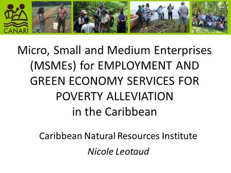Micro, Small and Medium Enterprises (MSMEs) for EMPLOYMENT AND GREEN ECONOMY SERVICES FOR POVERTY ALLEVIATION in the Caribbean Caribbean Natural Resources.