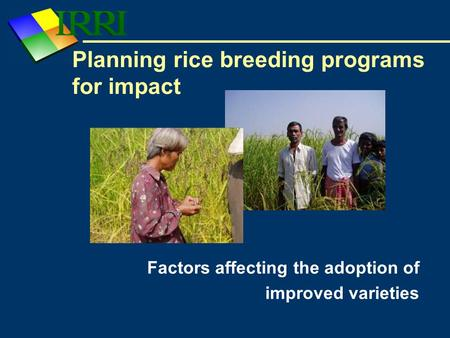 Planning rice breeding programs for impact Factors affecting the adoption of improved varieties.