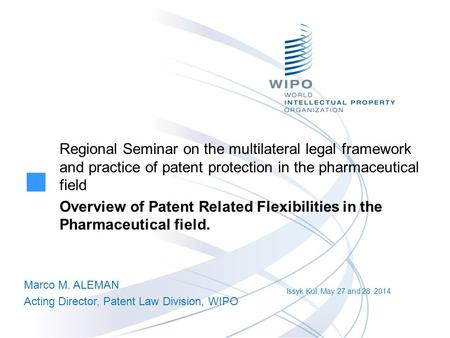 Regional Seminar on the multilateral legal framework and practice of patent protection in the pharmaceutical field Overview of Patent Related Flexibilities.