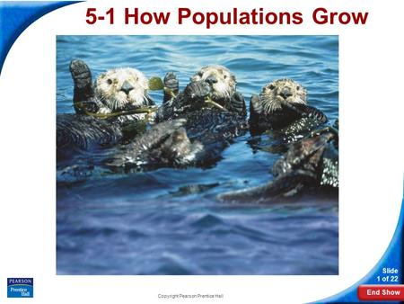 End Show Slide 1 of 22 Copyright Pearson Prentice Hall 5-1 How Populations Grow.