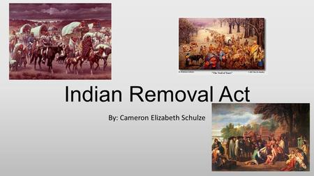 Indian Removal Act By: Cameron Elizabeth Schulze.