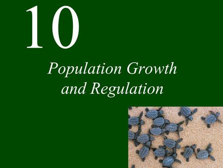 10 Population Growth and Regulation. Chapter 10 Population Growth and Regulation CONCEPT 10.1 Life tables show how survival and reproductive rates vary.