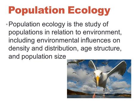 Population Ecology Population ecology is the study of populations in relation to environment, including environmental influences on density and distribution,