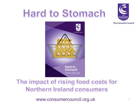 Www.consumercouncil.org.uk 1. 2 Introduction Background Key findings Conclusion.