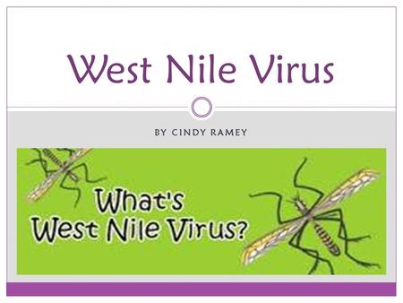 BY CINDY RAMEY West Nile Virus. West Nile virus (WNV) is a mosquito-borne zoonotic arbovirus Family: Flaviviridae Genus: Flavivirus Japanese Encephalitis.