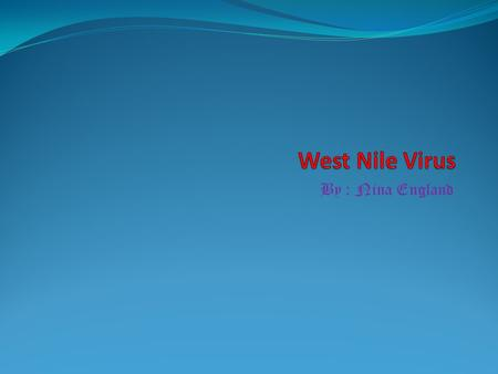 west nile and the mosquito essay