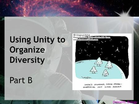 Using Unity to Organize Diversity Part B. Objectives... In the last presentation, we grouped a variety of nuts and bolts into classification trees. In.