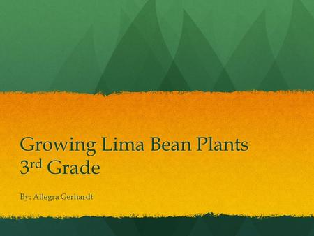 Growing Lima Bean Plants 3 rd Grade By: Allegra Gerhardt.