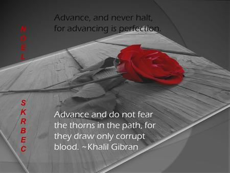 Advance, and never halt, for advancing is perfection. Advance and do not fear the thorns in the path, for they draw only corrupt blood. ~Khalil Gibran.